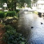 静岡県三島市楽寿園の写真