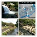 公園を流れる大場川