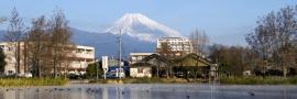 三島市のため池から見た富士山の写真