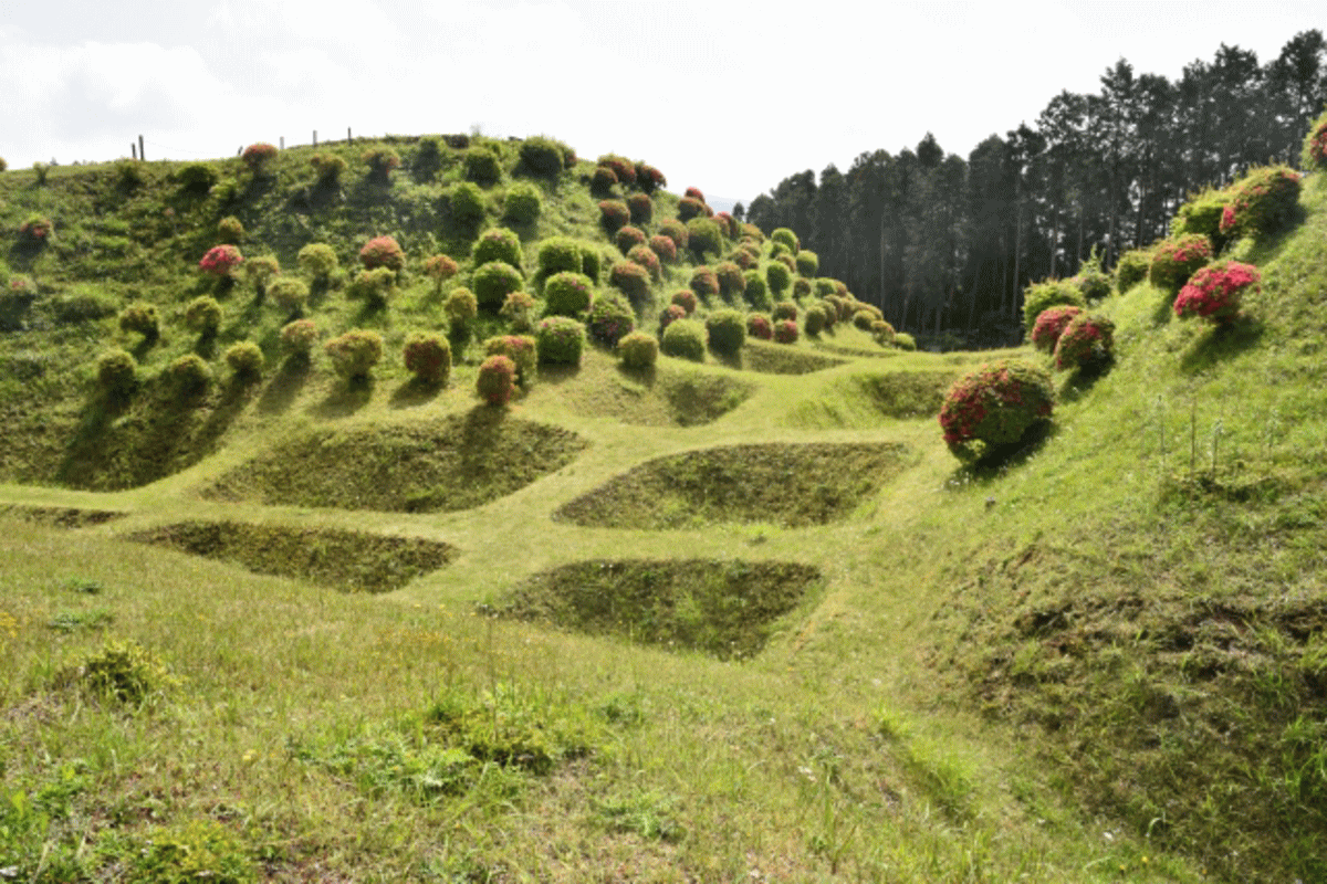 山中城跡の写真