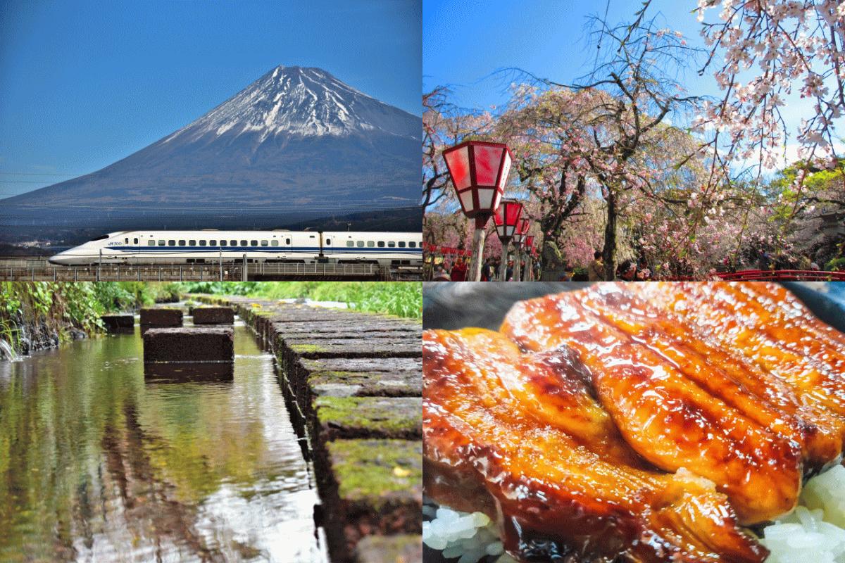 水、自然、富士山、うなぎなど三島市の魅力を表現している写真